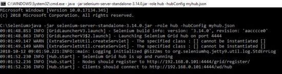 Selenium Grid Json file configuration hub